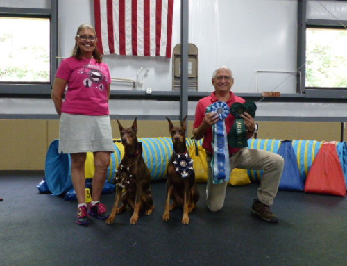2015 August Agility Trial