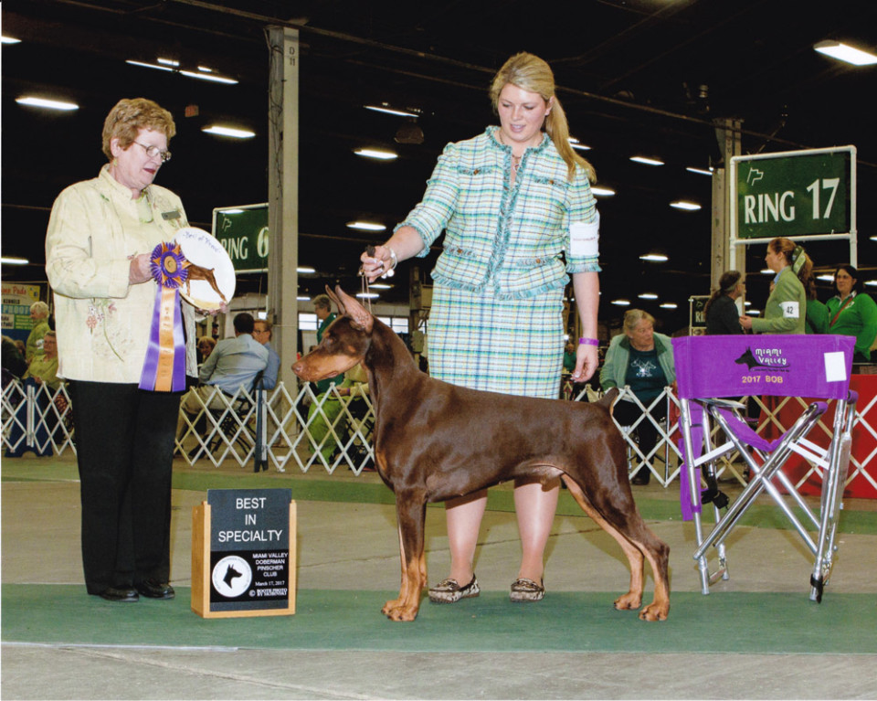 2017 March Specialty Shows