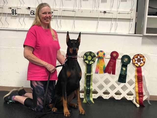 2019 August Agility Trials